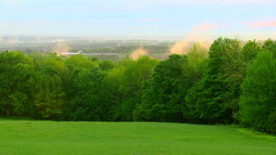 Coram Deo Farm Field