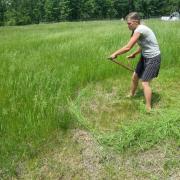 Kayla Scythes the field